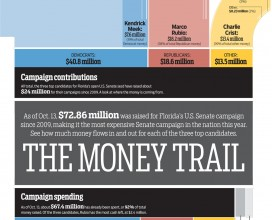 2010 senate campaign finance reform infographic news illustrated