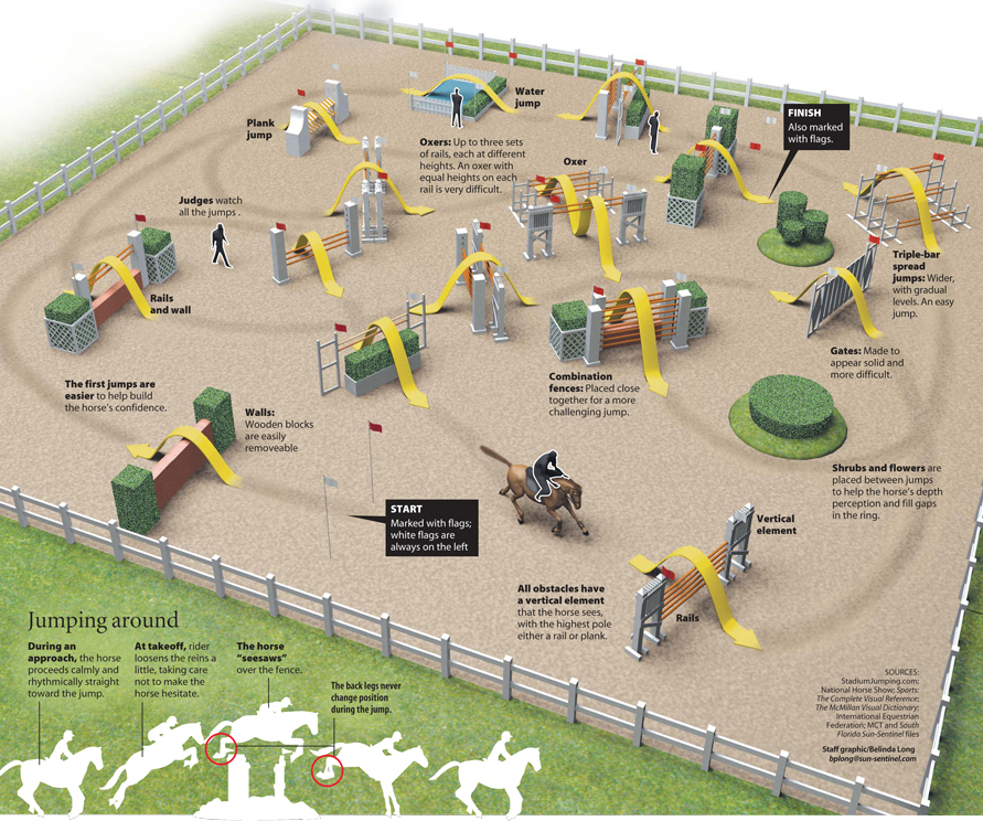 Horse show jumping news illustrated infographic