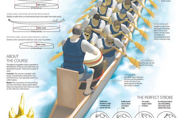 Dragon boat infographic