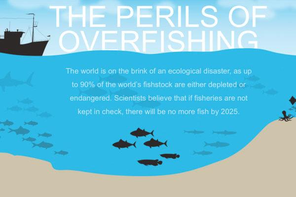 Overfishing Interactive