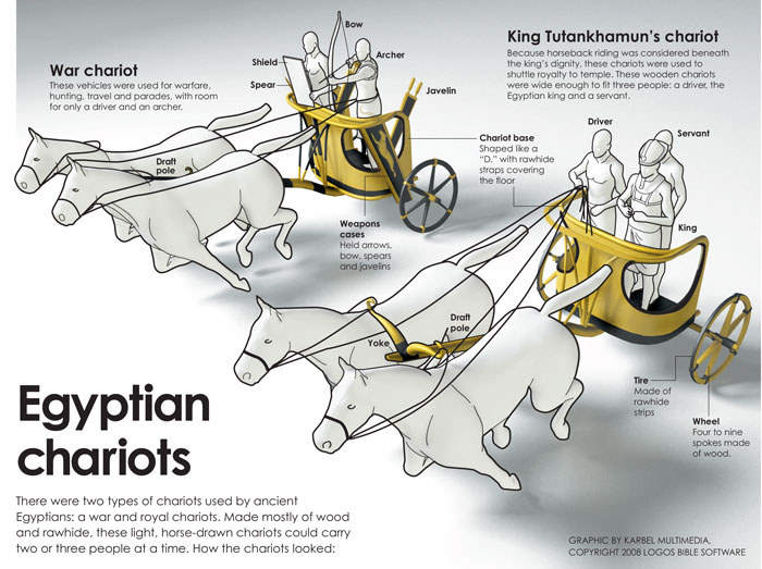 King Tut War Chariot infographic