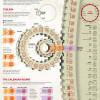 Mayan Calendar explainer infographic