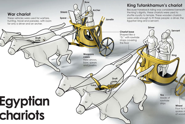 Egyptian War Chariot Infographic