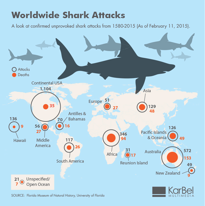 shark attack infographic image